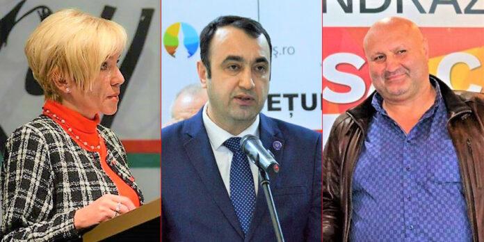 Vida Erika Noemi, Vasile Moldovan, Gheorghe Stan