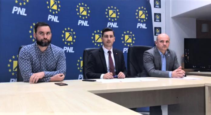 Cristian Niculescu-Țâgârlaș, Ionel Bogdan, Călin Bota